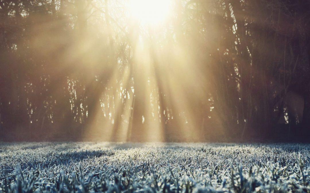Mit Vitamin D3 glücklicher und vitaler durch die kalte Jahreszeit.
